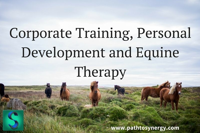 Corporate Training, Personal Development and Equine Therapy