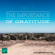 The Importance of Gratitude